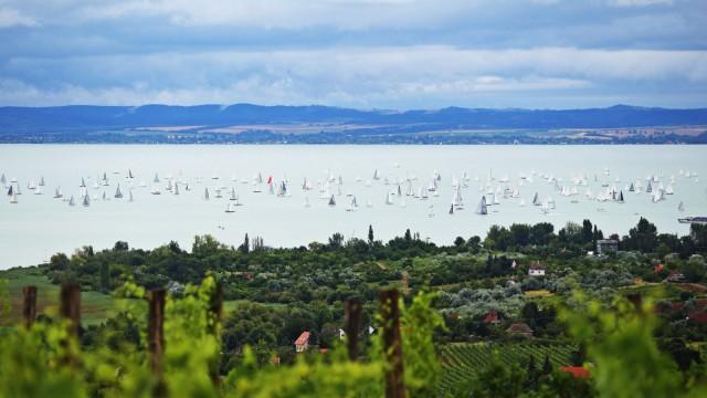 48th Blue Ribbon yachting race