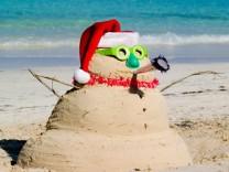 Weihnachten unter Palmen Foto: iStock