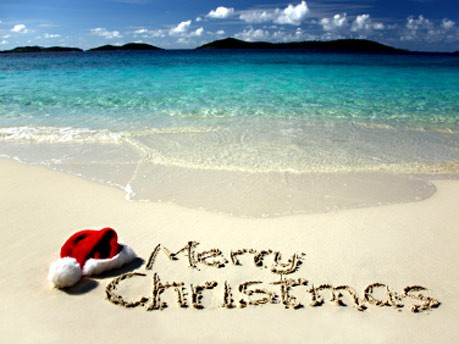 In Diesem Sinne Frohe Weihnachten.Weihnachten Unter Palmen In Diesem Sinne Frohe Weihnachten