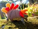 cute-crochet-tortoise-cozy-katie-bradley-10__700