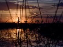 Afrika Botswana Okavango-Delta