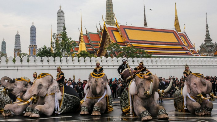 Elephants parade to honor the late Thai King Bhumibol Adulyadej