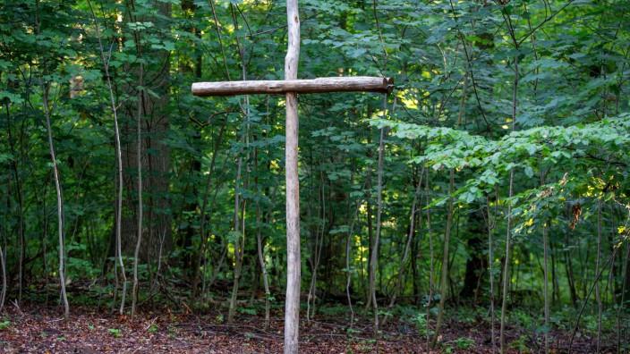 Bestattungen in Wäldern