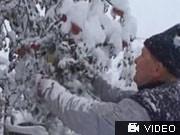 Winter in Rumänien