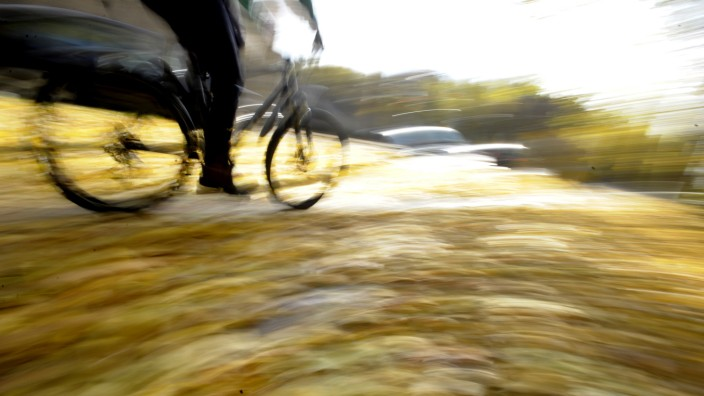 Herbstlaub als Verkehrsgefährdung, 2009