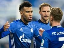 FC Schalke 04 - Darmstadt 98