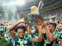 Palmeiras v Chapecoense - Brasileirao Series A 2016; Ze roberto