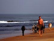 Goa Indien Strand, AFP