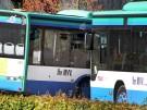 Sta.-MVV-Busse_am_Nordbahnhof_9