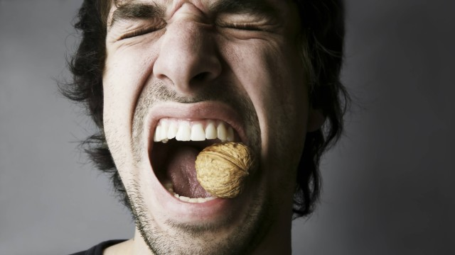 Portrait of young man trying to crack a walnut with his teeth studio shot model released PUBLICATIO
