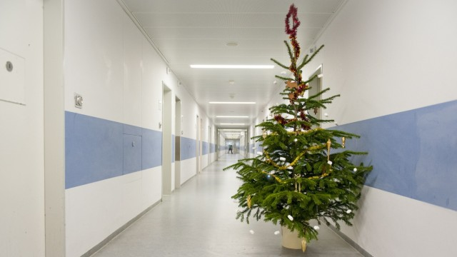 Künstlicher Weihnachtsbaum München Kaufen.Der Weihnachtsbaum Ist Steuerlich Brisant Wirtschaft Süddeutsche De