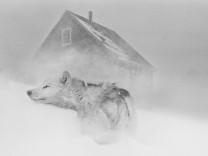 Last Days of the Arctic, Photos © Ragnar Axelsson, www.RAX.is 2010.; 20_S.290-291_Gesichter des Nordens