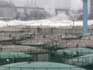 Ölpreis auf höchstem Stand seit einem Jahr (Bild)