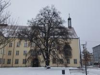 Regensteiner-Linde Pasing rathaus