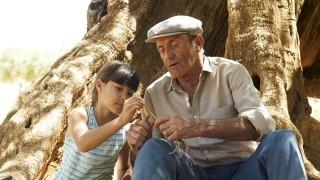 Foto aus dem Film Olivo