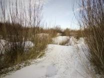 Naturschutzgebiet Fröttmaninger Heide, 2012