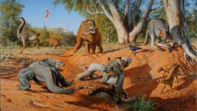 Anthropologie Australien