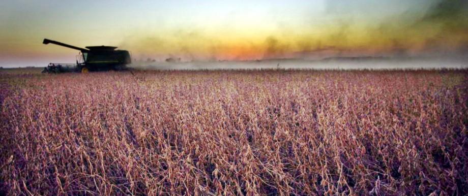 Bayer kauft Monsanto für 66 Milliarden Dollar