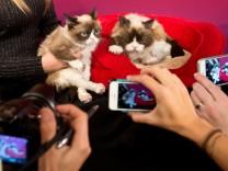 Das Smartphone ist die beliebteste Foto-Gerät.