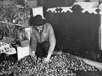 Bauer mit Apfelvorrat