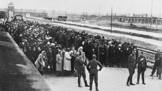 Bildergebnis für bilder aus auschwitz birkenau holocaustopfer