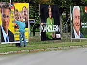 Merkel, Steinmeier, FDP, dpa