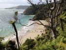 Stewart Island 7