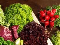 Nur für Das Rezept Stromberg Gemischter Salat mit Spezialmarinade Rezept aus der SZ-Beilage Wohlfühlen vom 8. April 2015.Foto: ExQuisine / Fotolia