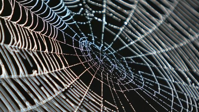 A spider-web in the Kosovo village of Acareva