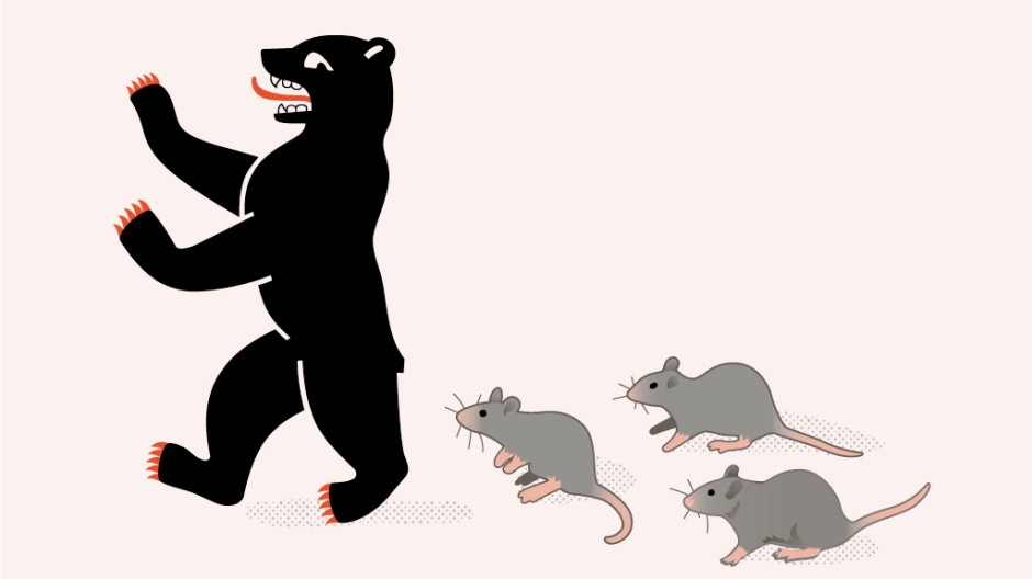 Ratten Schädlingsbekämpfung in Berlin