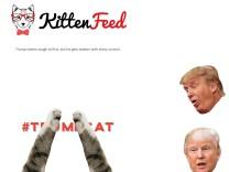 Trumpcat