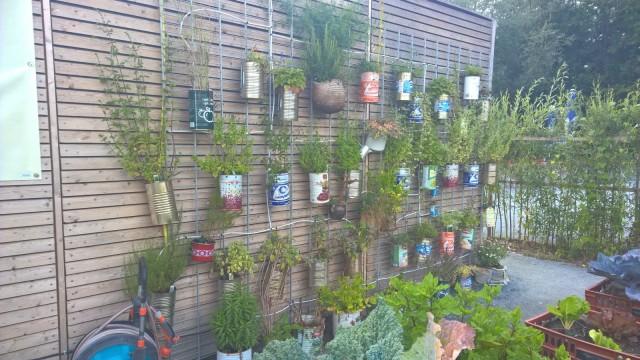 crazy gardening