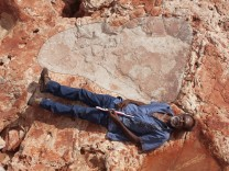 Goolarabooloo Law Boss Richard Hunter and a sauropod track in the Lower Cretaceous Broome Sandstone, Walmadany area, Dampier Peninsula, Western Australia. Photo: Damian Kelly