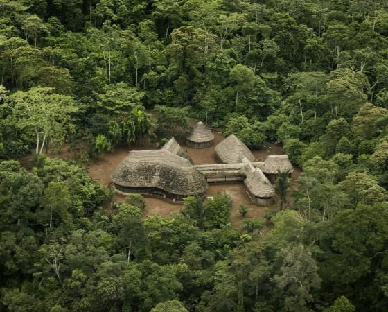 YH_100AM_EC_0189_Hundert Tage Amazonien