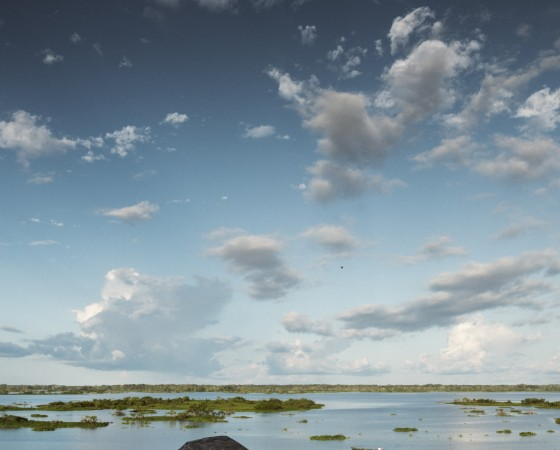 YH_100AM_PE_4520_Hundert Tage Amazonien