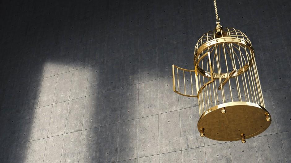 Empty golden birdcage PUBLICATIONxINxGERxSUIxAUTxHUNxONLY AHUF000045
