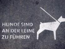 Hunde an der Leine führen