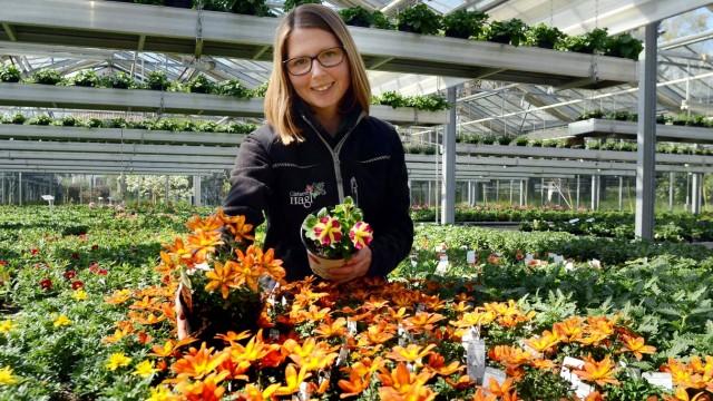 Gartenbau Erding gartenbau hobbygärtner müssen sich gedulden erding süddeutsche de