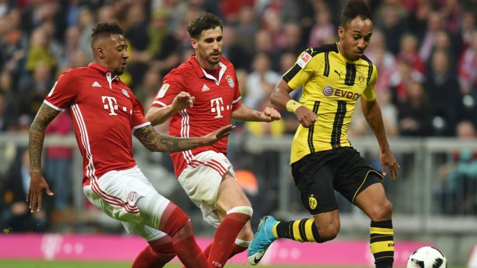 Sportticker FC Bayern