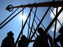 Maibaum wird in traditioneller Handarbeit aufgestellt