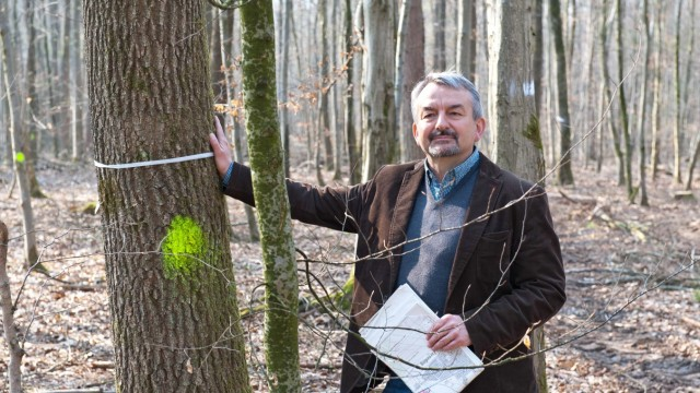 Ebersberger Forst Ebersberger Forst
