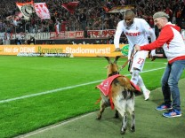 Fussball Bundesliga Deutschland Herren Saison 2016 2017 32 Spieltag Rhein Energie Stadion Köl