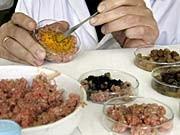 neuer gammelfleisch-skandal in niedersachsen, geflügelfleisch lieferant, ap
