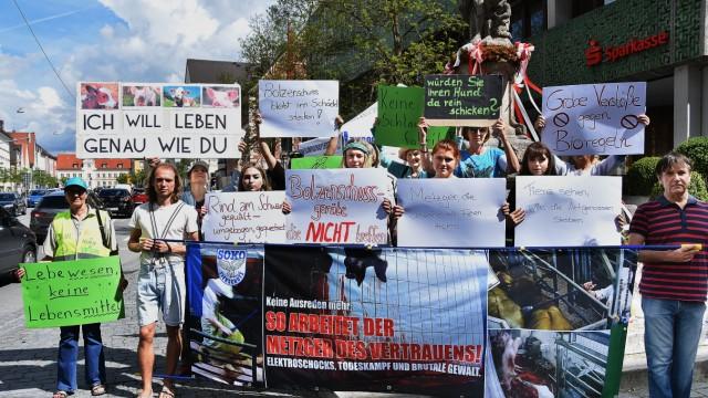 Demo gegen Schlachthof
