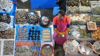 Fischmarkt in Seoul