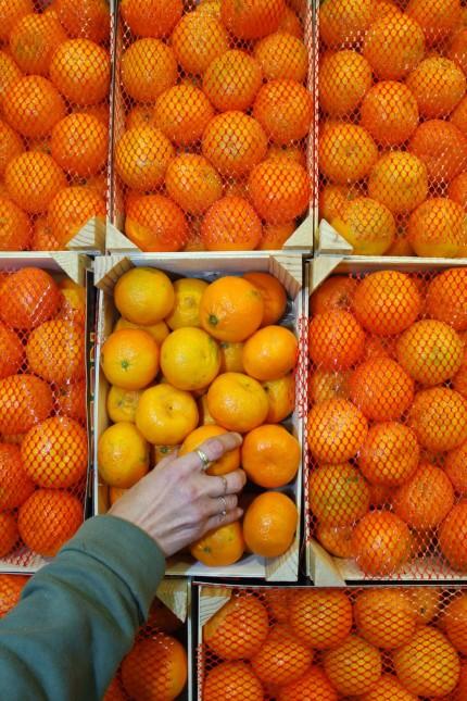 Zu viel Pestizide in Supermarkt-Mandarinen