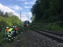 Umgestürzter Baum stoppt Züge bei Aßling