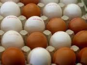 Eier ddp