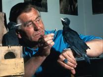 Tier, Vogel, Schwarzspecht, Heinz Sielmann, Filmproduktion 'Im Spechtrevier'