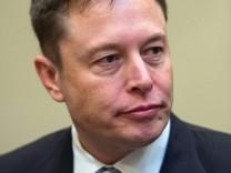 Elon Musk, Donald Trump